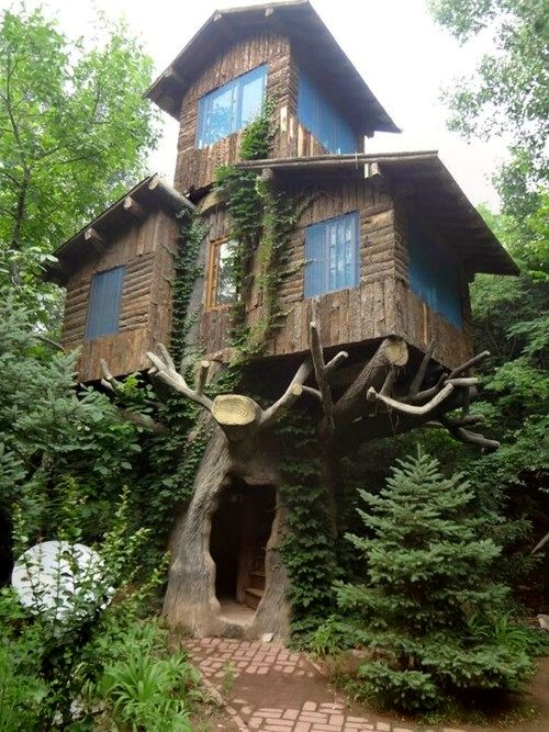♥ this tree house