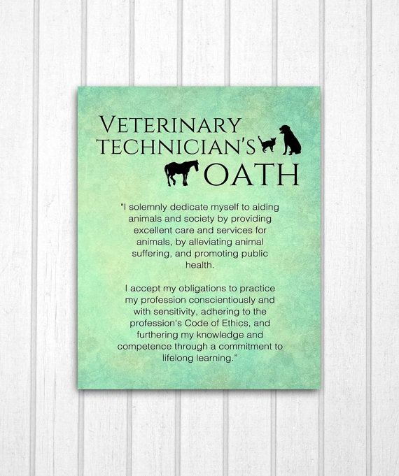 A print featuring the Veterinary Technicians Oath. Great for any vet clinic or it would make a great gift for the vet tech in your life.