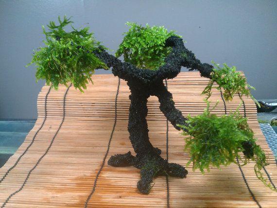 New addition to the etsy shop: Premium Large Aqua Bonsai Tree For the Aquarium by AquaBonsai, $65.00