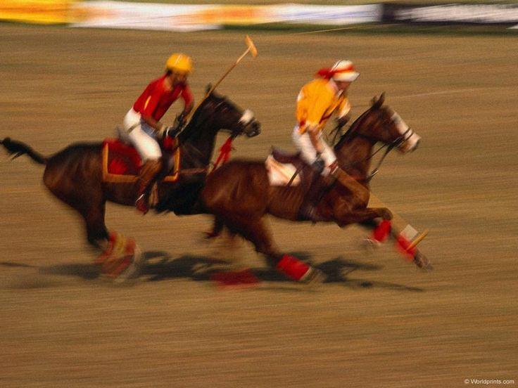 sfondi Equitazione per desktop: http://wallpapic.it/sport/equitazione/wallpaper-29662