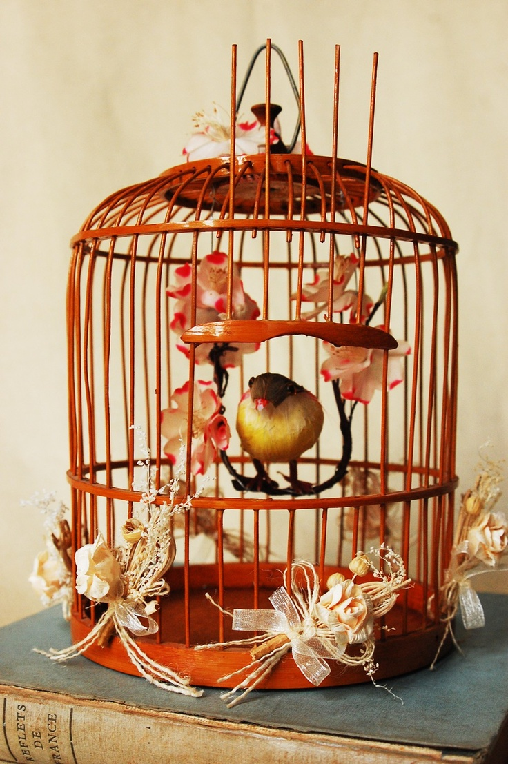 102 best birdcage decor images on pinterest birdcage for Cage d oiseau decorative