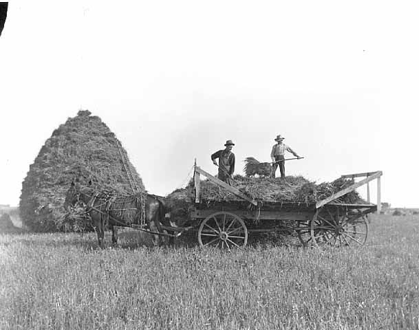 Photo: Minnesota State Historical Society. Hay stack and wagon. 1910. Creator: Louis Enstrom