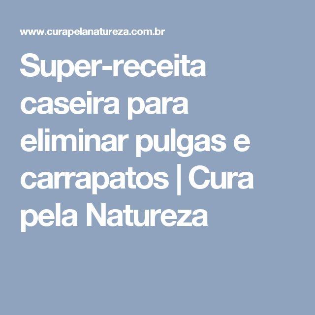 Super-receita caseira para eliminar pulgas e carrapatos | Cura pela Natureza