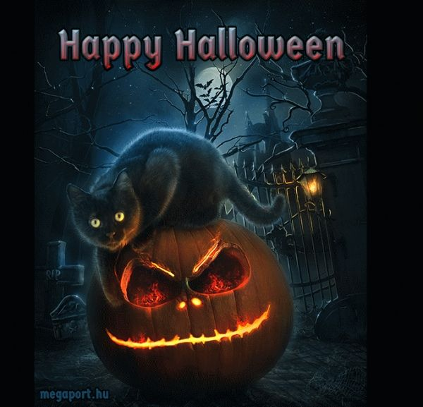 Image result for happy halloween gif