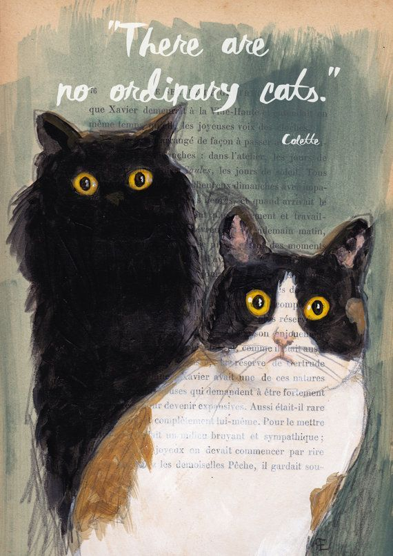 Quote Print-Cat Illustration-Art Print-Cat Art-Home Decor-Reproduction : There are no ordinary cats...