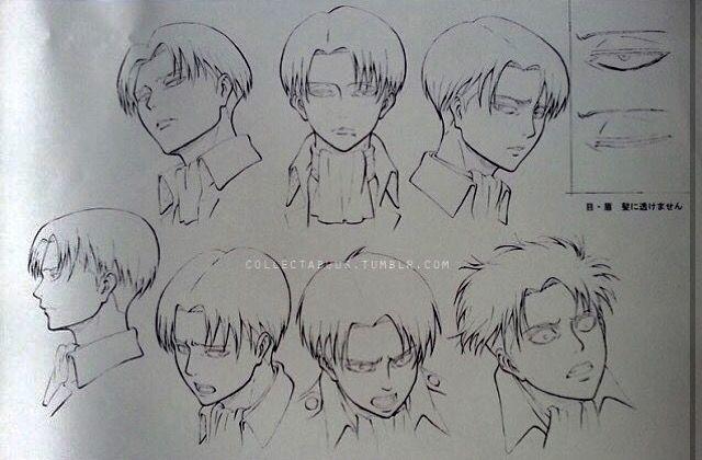 Levi official art