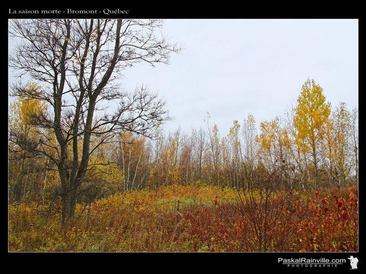 La saison morte Prise à Bromont, Québec, Canada http://www.paskalrainville.com/
