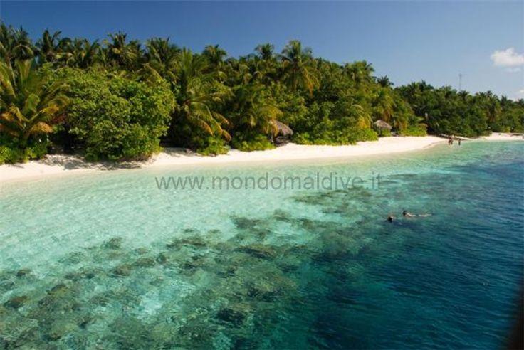 Vilamendhoo Maldive 043
