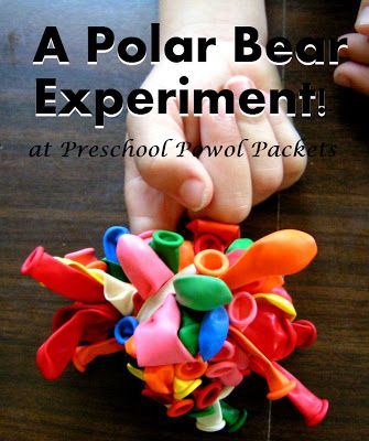 Polar Bear Fur Experiment: Surround finger w/balloons to demonstrate bear fur & insulation. Dip covered finger in ice water.