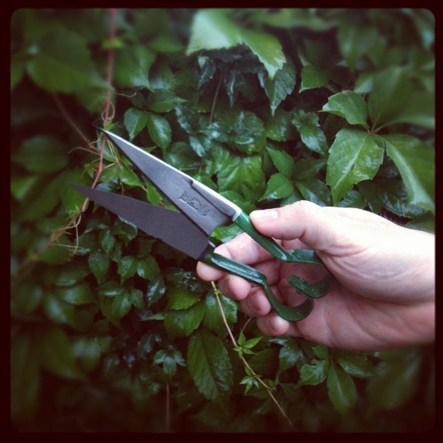 Mini Herb Shear from The Garden Tool Shop www.gardentoolshop.com.au