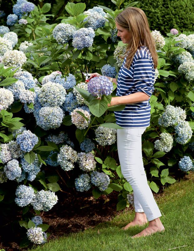 Blue-and-White Aerin Lauder - Aerin Lauder Hamptons Home - Town & Country Magazine