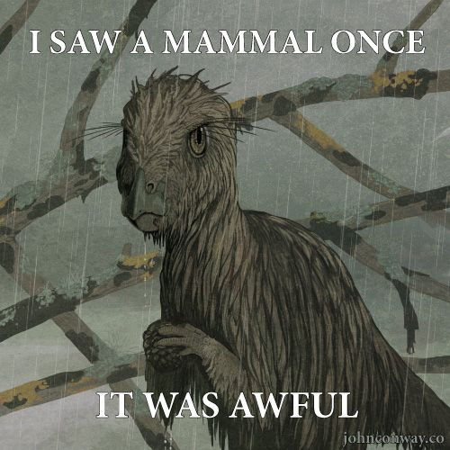 John Conway's Log | Hay, it's the grumpy Hypsilophodon is grumpy meme!...