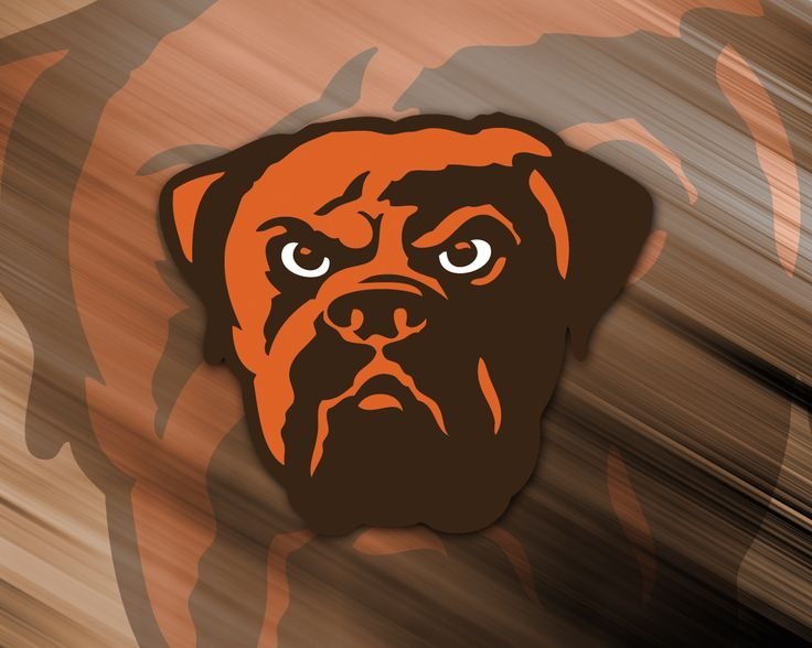 The Cleveland Browns!  I will always bleed orange and brown!