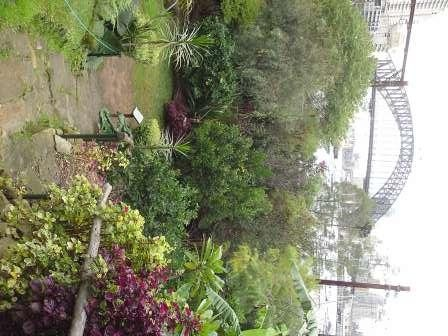 Wendy's Secret Garden with Sydney Harbour Bridge Backdrop