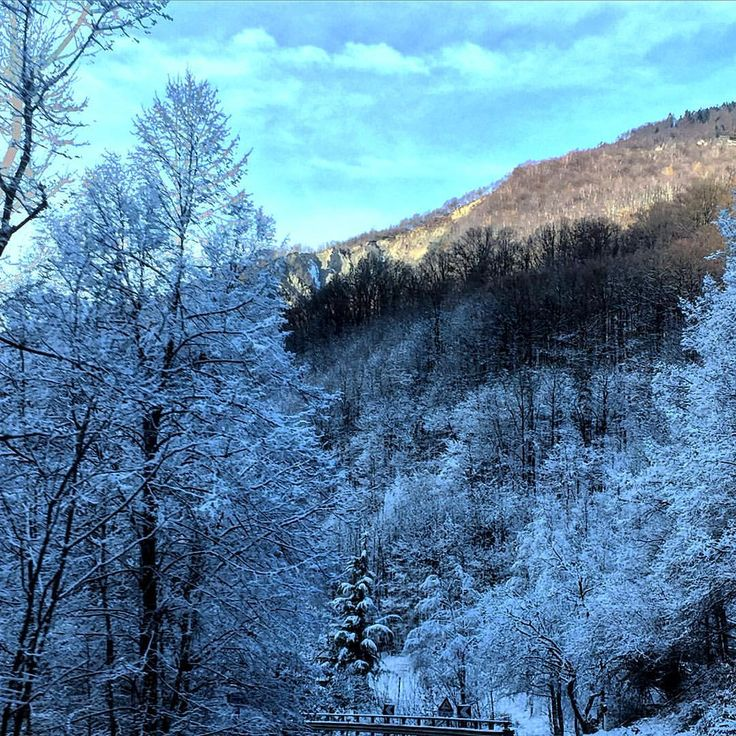 """Un tocco di bianco"" #callme_blest #vallevigezzo #santamariamaggiore #neve #piemonte #snow #igerspiemonte #igers #photo #photogram #photograpy #pic #picoftheday #picture #trees #snowy #snowontrees #iphone6 #instaday #instapic #instagram #winter #inverno #2016"
