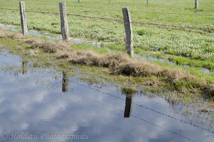 L1M1AP3 Nikon D5100 Automode No flash 1/250sec F/8 ISO 110 using fence line and reflection