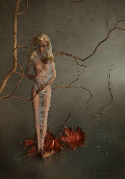 Cocoon by Mariel Clayton