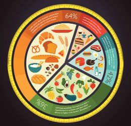 Balanced Diet Chart >>>>>>>>>>>>>