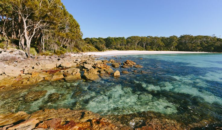 White Sands walk and Scribbly Gum track, Jervis Bay National Park. Photo: David Finnegan/NSW Government