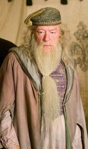 Professor Albus Dumbledore                                                                                                                                                                                 Mais