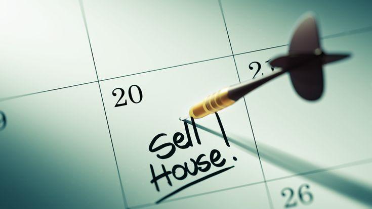 Read Springbok Properties blog about