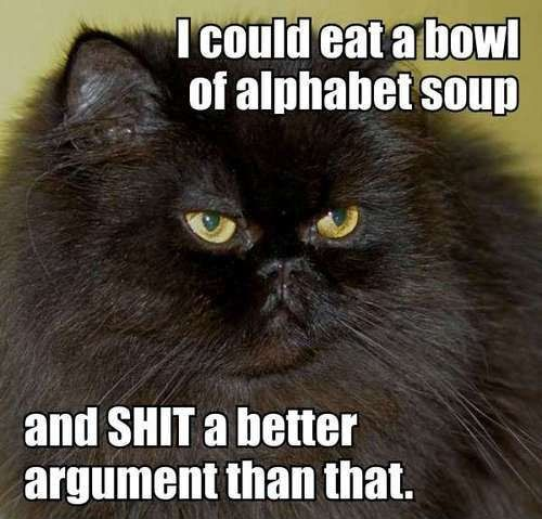 I could eat a bowl of alphabet soup and 20 more funny cat captions