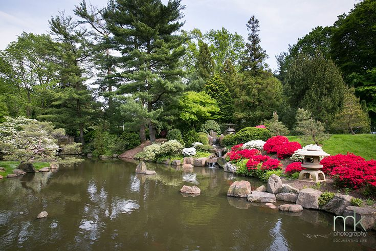 the beautiful shofuso japanese house and garden at the