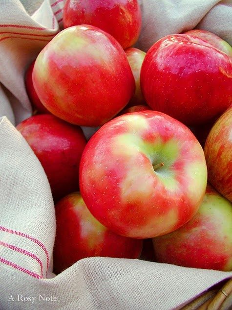 One of my favorite things: Honey Crisp Apples. Here we come Apple Orchard!!!!
