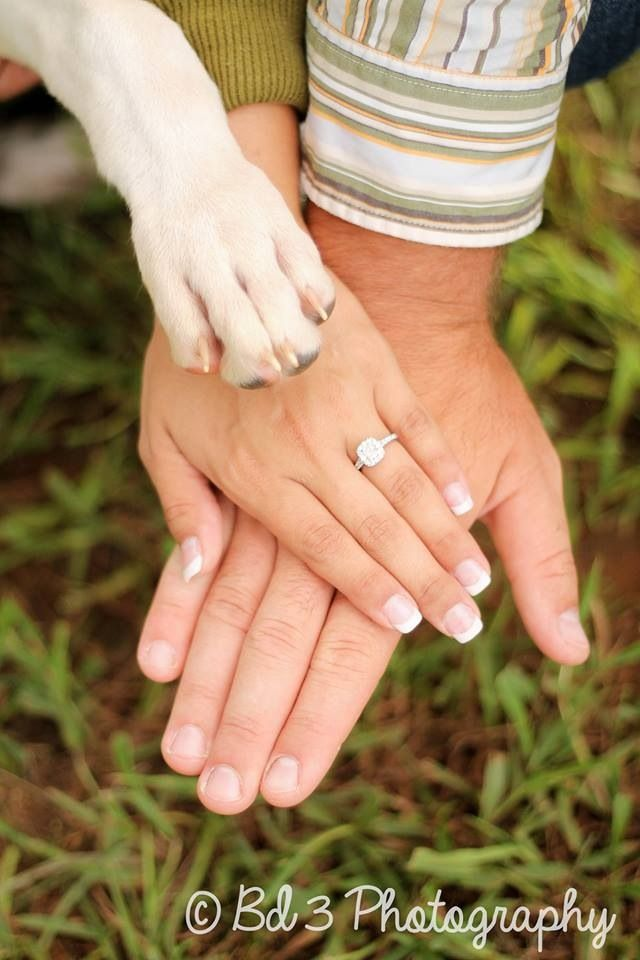 Engagement photo shoot - farm engagement - couple photos