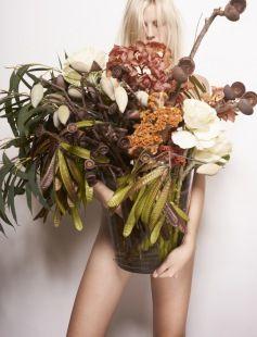 Grandiflora Australian Native Mixed arrangement   www.grandiflora.net