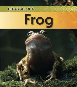 Frog (Life Cycle of a) by Angela Royston