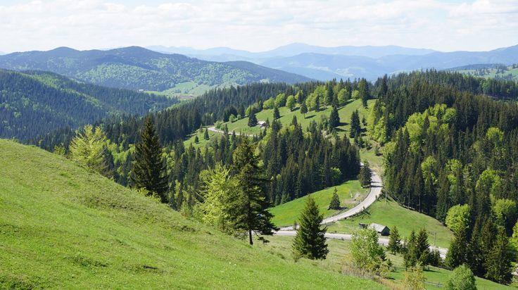 Bucovina | Un colt de rai al Romaniei
