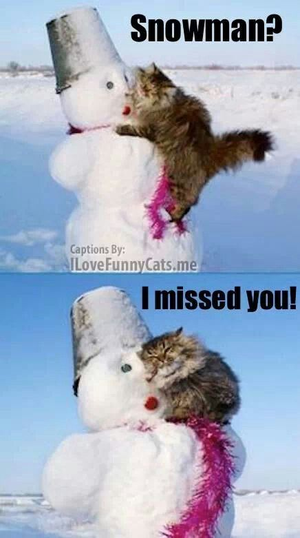 I missed you snowman