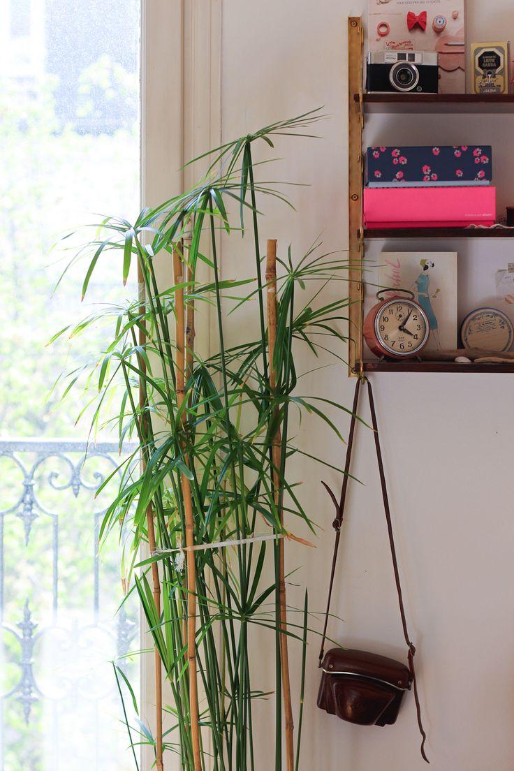 les 276 meilleures images du tableau jardinage sur pinterest plantes d 39 int rieur jardinage et. Black Bedroom Furniture Sets. Home Design Ideas