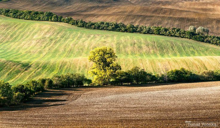 Pozdní odpoledne, kdy krajinu ozářilo nízké podzimní slunce. Mezi kopci a vlnami dokáže fotograf strávit dlouhé hodiny. Je to totiž zcela jistě jedno z nejfotogeničtějších míst v celé České republice.