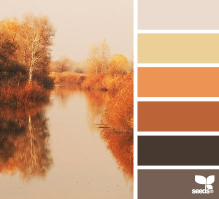 Thanksgiving Hues - http://design-seeds.com/index.php/home/entry/thanksgiving-hues