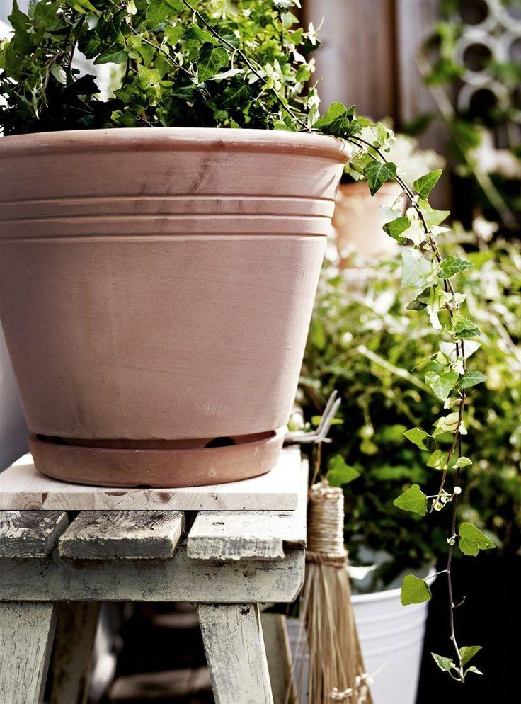 17 meilleures images propos de jardin sur pinterest jardins plates bandes sur lev es et l gumes - Ikea jardin et terrasse bordeaux ...