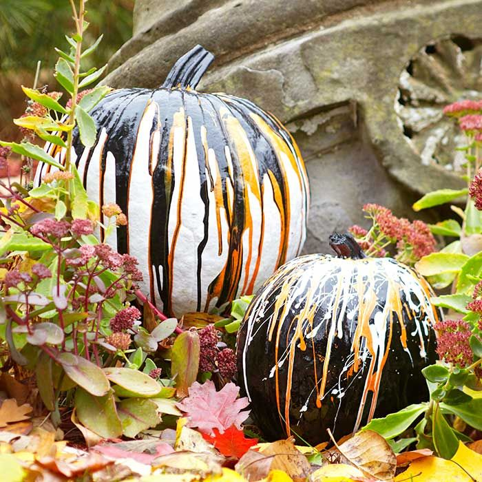 26 best painted pumpkins 6th grade images on pinterest halloween ideas halloween decorations. Black Bedroom Furniture Sets. Home Design Ideas