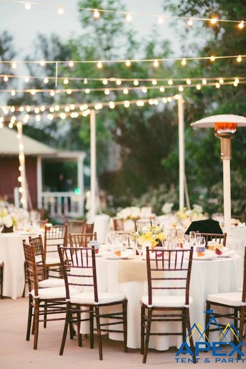 7 best party chair rentals images on pinterest | wedding events