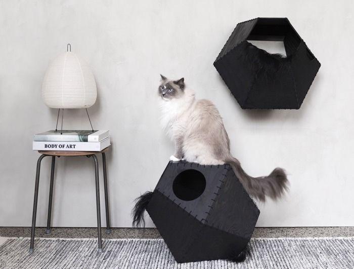 Best 25  Modern cat furniture ideas on Pinterest   Cat scratcher  Cat  scratching post and Cat trees diy easy. Best 25  Modern cat furniture ideas on Pinterest   Cat scratcher