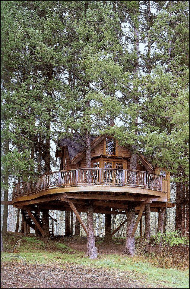 Fabulosa casa de madera en el árbol01