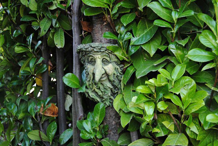 An Elf in his Labyrinth (Cascina dei Frutti - Mango CN - Italy)