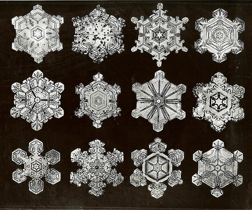102 best snowflakes under an electron microscope images on