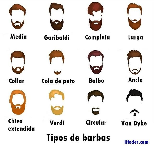 20 Tipos De Barba Juvenil Y Adulta Con Estilo Con Fotos Tipos De Barba Estilos De Bigote Tipos De Bigotes