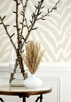 zebra print wallpaper.. love
