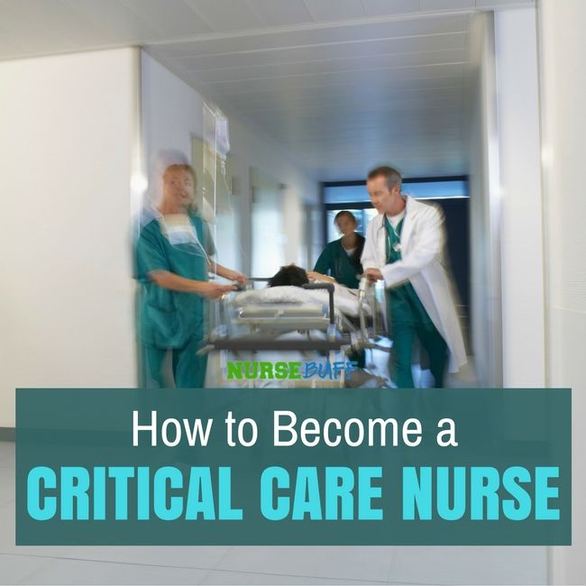 121 best Nursing Careers images on Pinterest Nursing career - critical care nurse practitioner sample resume