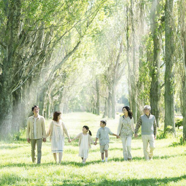 ポプラ並木で手をつなぐ3世代家族 (c)hororo style