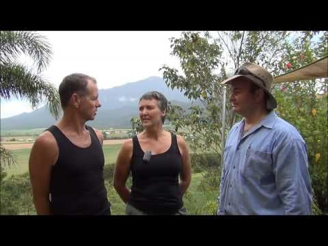 Vanilla beans seem to be the new black when it comes to Australian cooking.    In this video Paul Oliveri from 100 Mile Author interviews Fiona and Matt from Broken Nose Vanilla.  Fiona and Matt are vanilla growers who produce quite a number of value adding products from their farm near the foothills of Queensland's tallest Mountain.  In this video Fiona and Matt talk about how they grow, pollinate and cure their beans along with the challenges of farming in Tropical North Queensland.