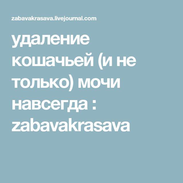 удаление кошачьей (и не только) мочи навсегда : zabavakrasava