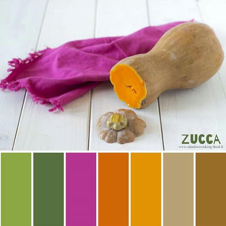 Zucca - Pumpkin